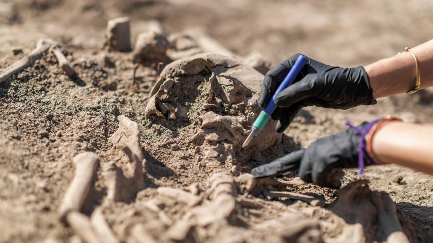 В Греции нашли череп древнего воина со следами уникальной операции