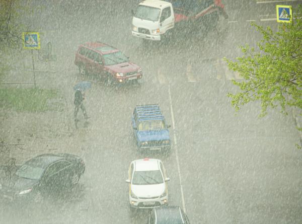 Дожди и холодный порывистый ветер. Подробный прогноз погоды на неделю