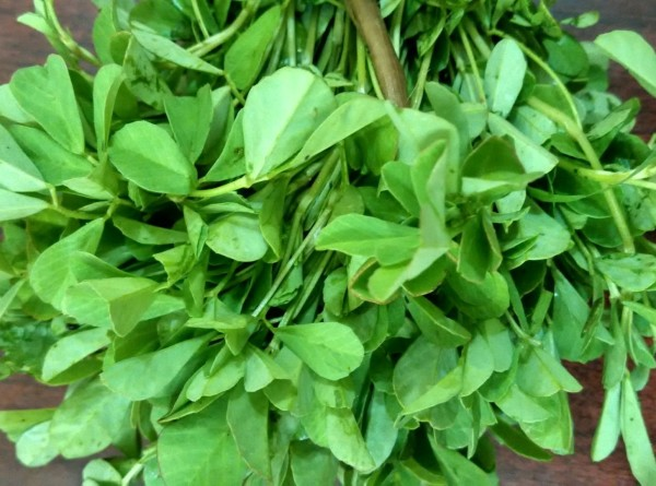 Лечебные пряности: нутрициолог назвала 10 приправ для здоровья и долголетия