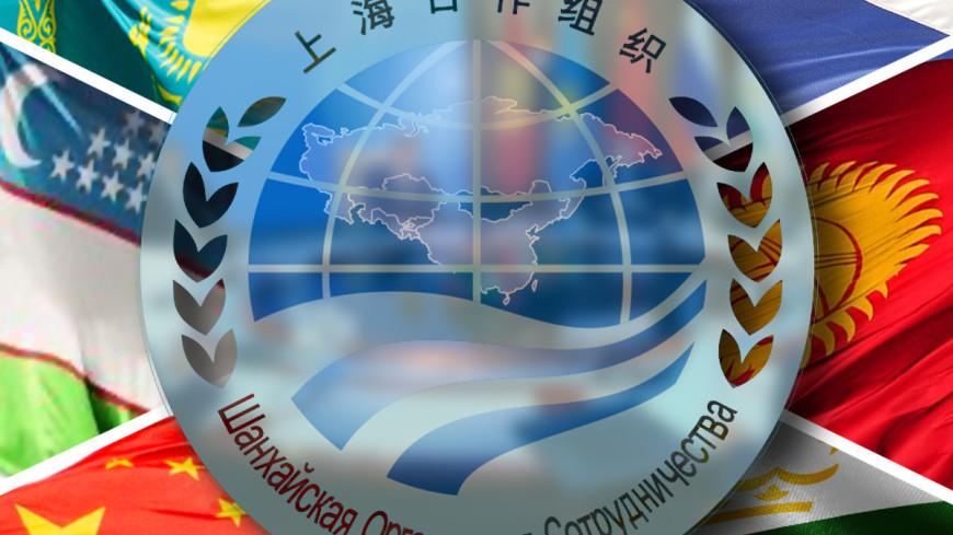 Страны ШОС подписали совместную декларацию и 30 других документов