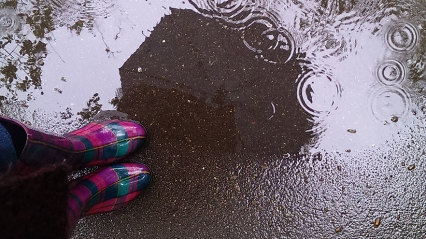 """© Фото: Елизавета Шагалова, """"«МИР 24»"""":http://mir24.tv/, зонт, дождь, лужи, сапоги, осень"""
