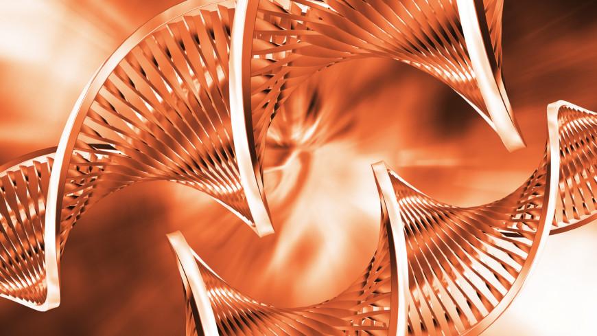 В ДНК млекопитающих нашли сотни древних вирусов