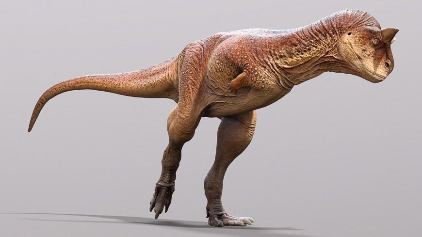 Палеонтологи восстановили облик «плотоядного быка» эпохи динозавров