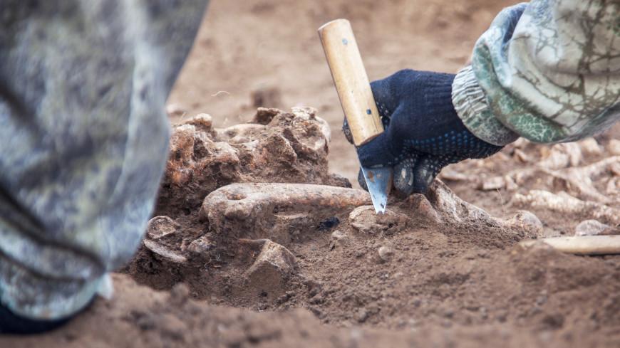 На Камчатке археологи нашли стоянку древних людей