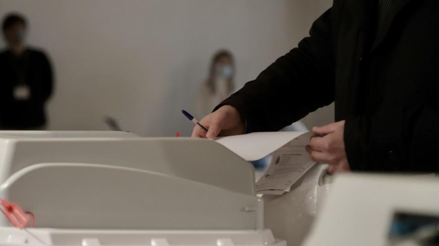 Общественный штаб собирается сверить результаты онлайн-голосования в Москве