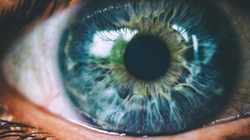 «Сперва проходит бессимптомно, а потом приводит к слепоте»: самые грозные заболевания сетчатки глаза