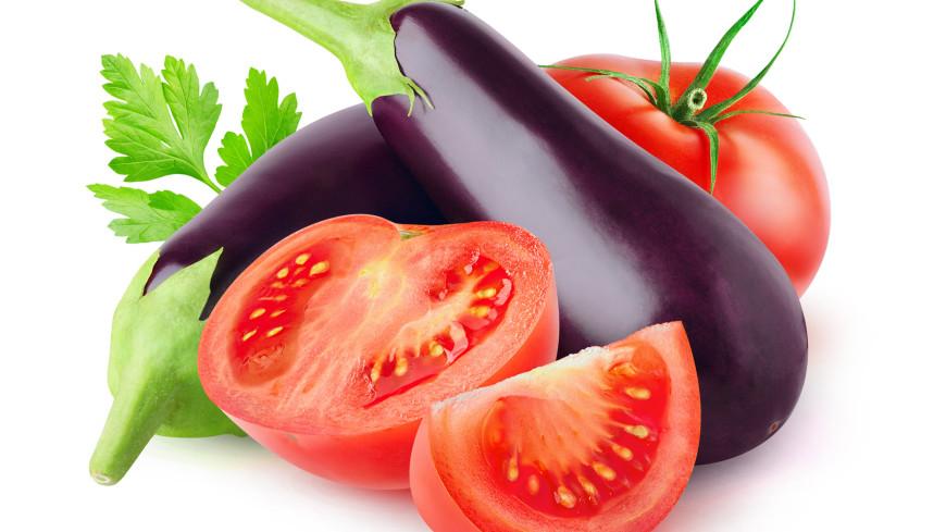 Баклажаны с помидорами: рецепт простого и вкусного салата на зиму