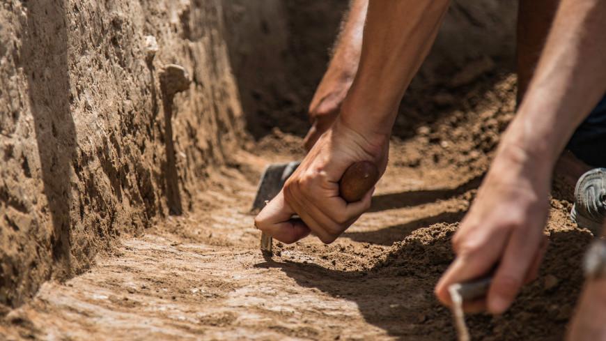 В Баварии обнаружили могилу средневекового «хипстера»