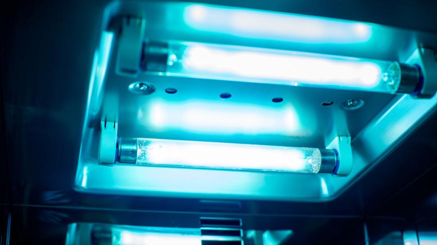 Ученые нашли светящегося в ультрафиолете грызуна