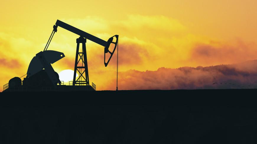 Страны ОПЕК+ продолжат согласованный курс по наращиванию добычи нефти