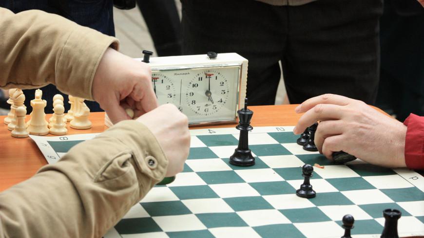 Шахматы, уличные шахматы, шахматисты, шахматы