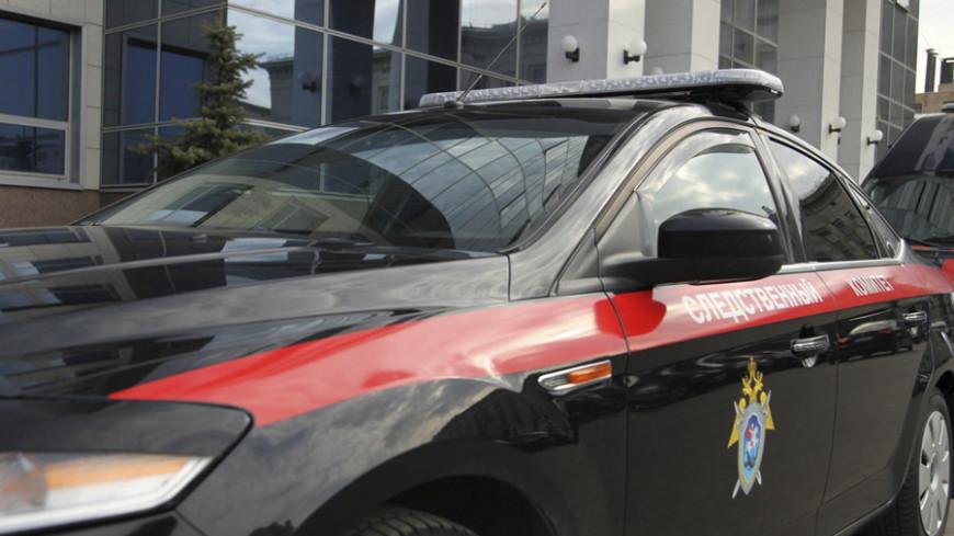 Уголовное дело возбудили после гибели женщины и девочки под Ельцом