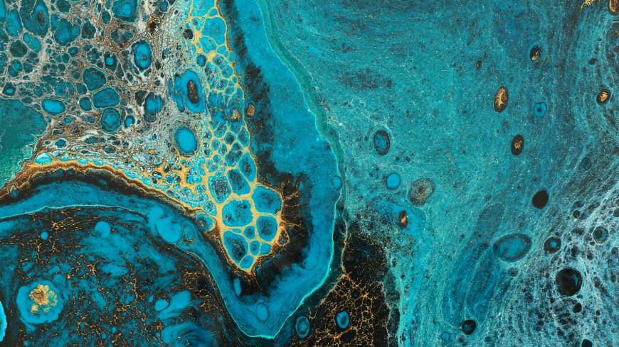 Разлив нефтепродуктов произошел в порту Темрюка