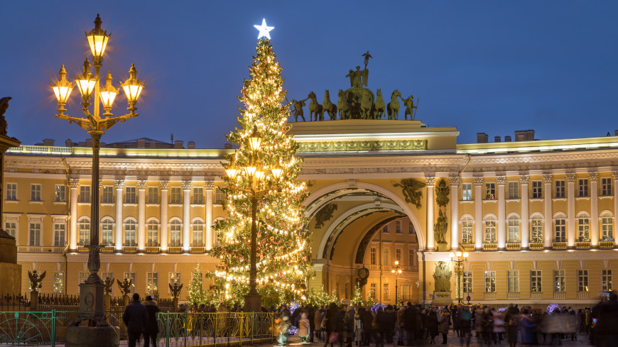 В Петербурге началось голосование по выбору новогодней ели для Дворцовой площади
